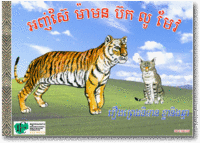 AS033 The tiger and the cat